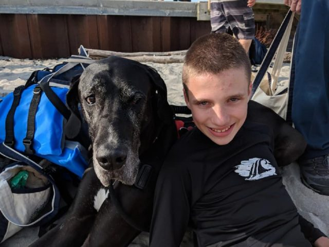 The Amazing Bond Between A Service Dog And A Cerebral Palsy Patient