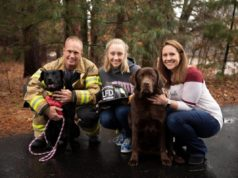 Dog That Miraculously Survived Fire Gets Adopted By A Fire Fighter